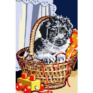 Sticktwist-Gobelin Hund im Korb