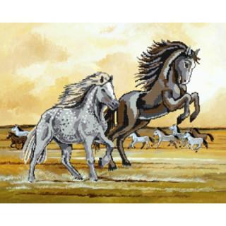 Kreuzstich-Effektbild Wilde Pferde