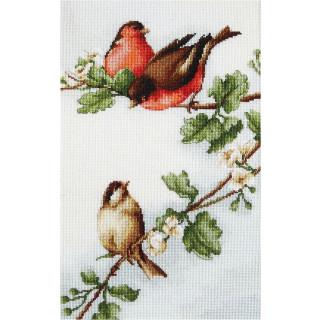 Luca- S Zählmusterpackung Birds