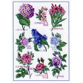 Musterbogen Blütenzauber